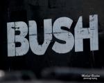 bush-1106-1-copy_975x780