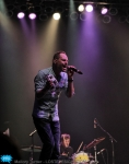 ginblossoms13
