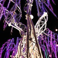 Review – Nocturnal 2011 @ NOS Event Center – San Bernadino, CA – 09/23,09/24